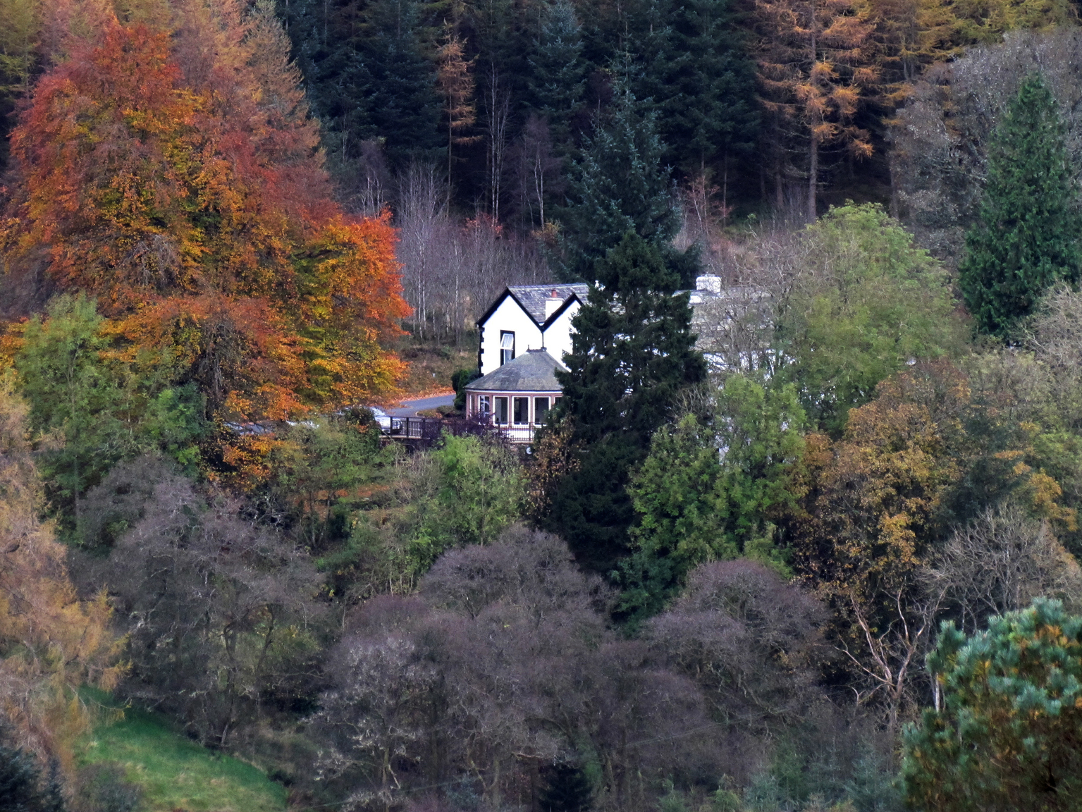 the-cottage-in-the-wood