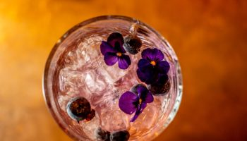 Gin-and-Juice-